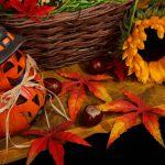 10月の言葉『達成感を楽しみながら進む』